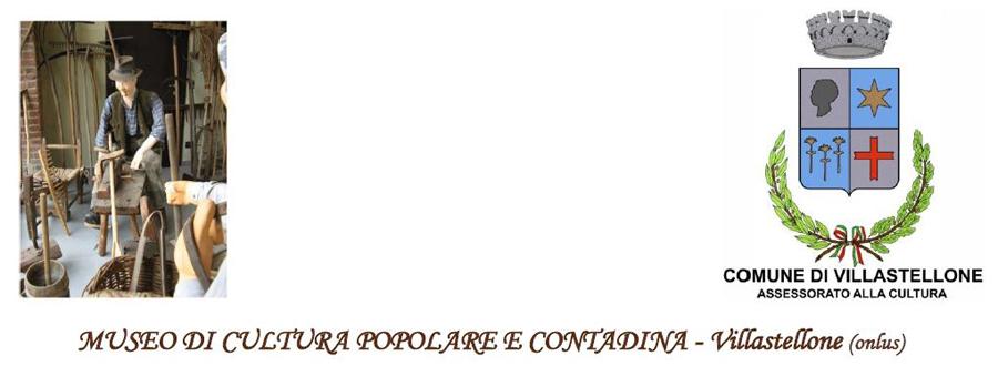 Museo Villastellone logo